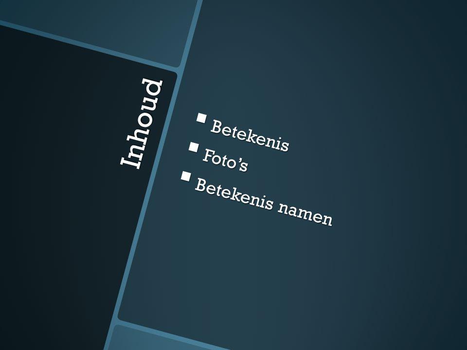 Foto's voornaam- familienaam  Hans Anders  Opticien