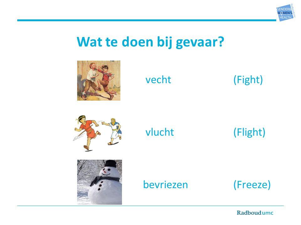 Wat te doen bij gevaar vecht(Fight) vlucht (Flight) bevriezen(Freeze)