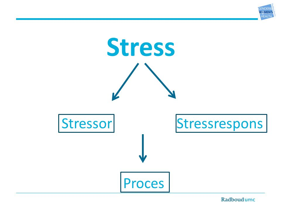 Stress StressresponsStressor Proces