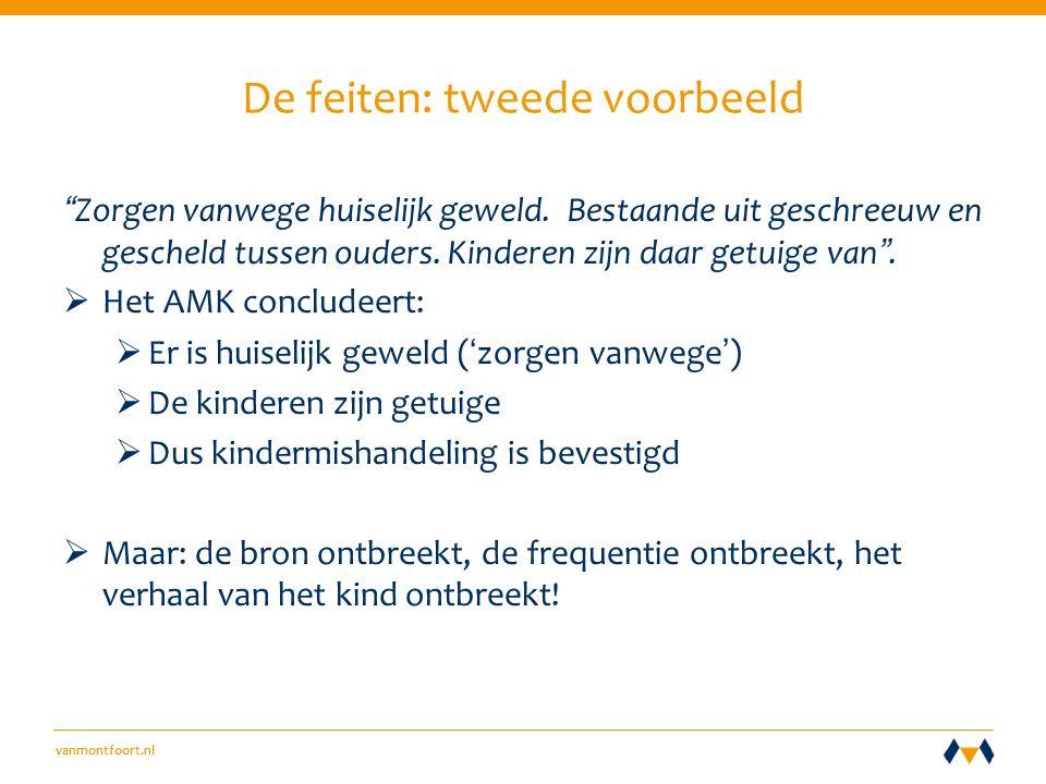 vanmontfoort.nl De feiten: tweede voorbeeld Zorgen vanwege huiselijk geweld.