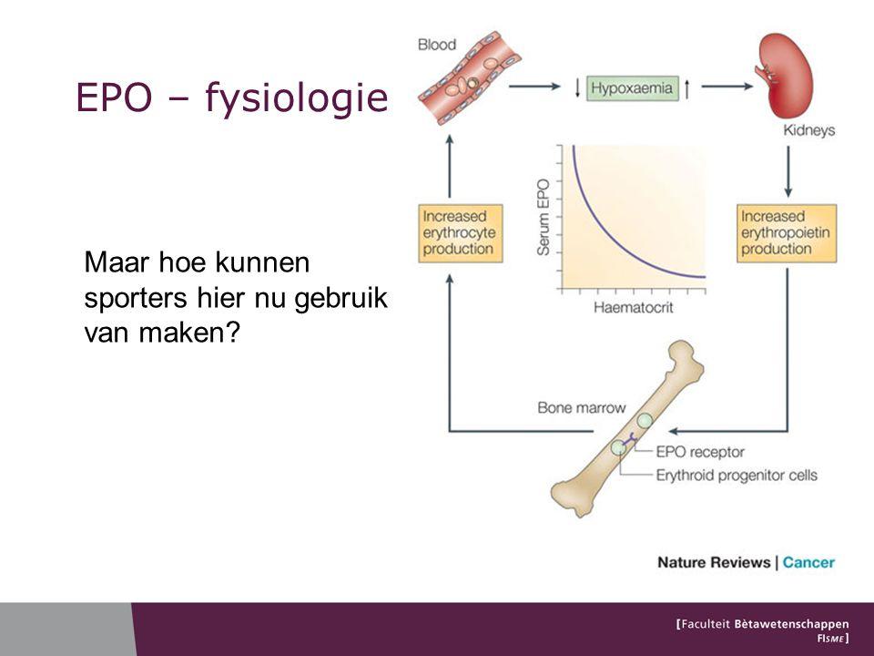 EPO – fysiologie Maar hoe kunnen sporters hier nu gebruik van maken?