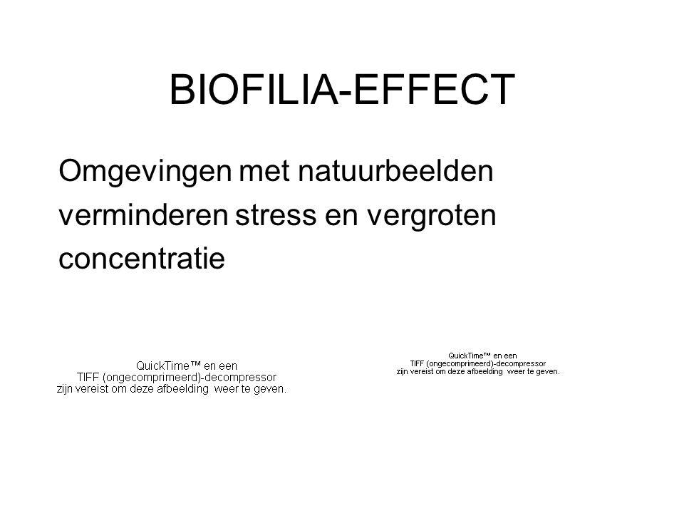 BIOFILIA-EFFECT Omgevingen met natuurbeelden verminderen stress en vergroten concentratie