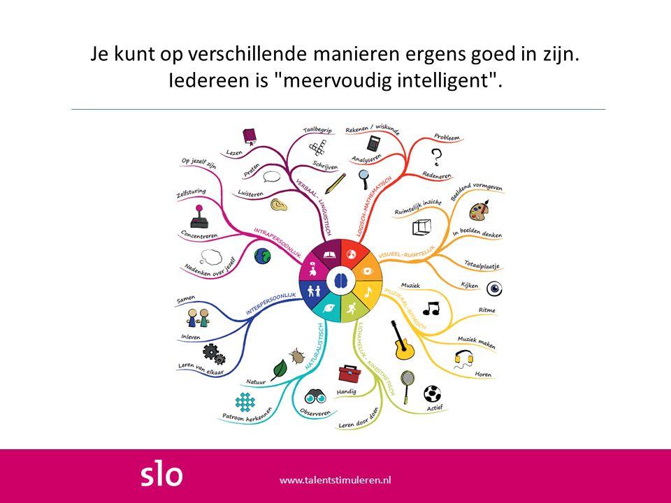 Van deze acht intelligenties gebruiken de meeste mensen drie het liefst.