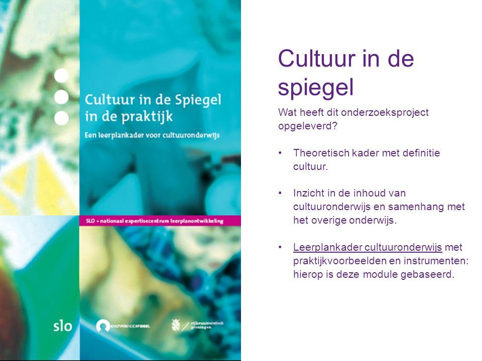 Cultuur in de spiegel Wat heeft dit onderzoeksproject opgeleverd.