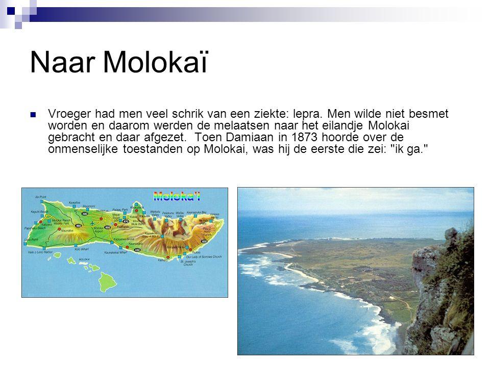 Naar Molokaï Vroeger had men veel schrik van een ziekte: lepra.