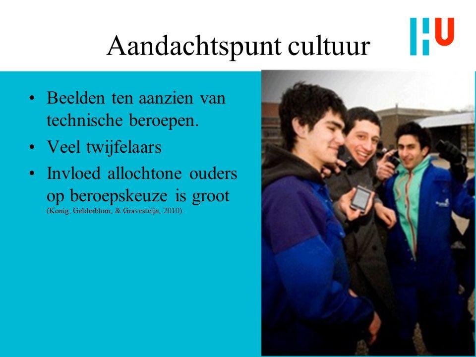 Aandachtspunt cultuur Beelden ten aanzien van technische beroepen.