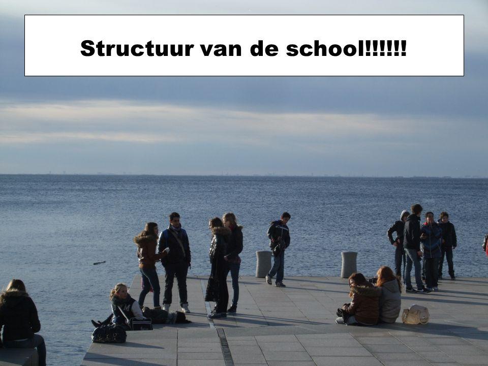Structuur van de school!!!!!!