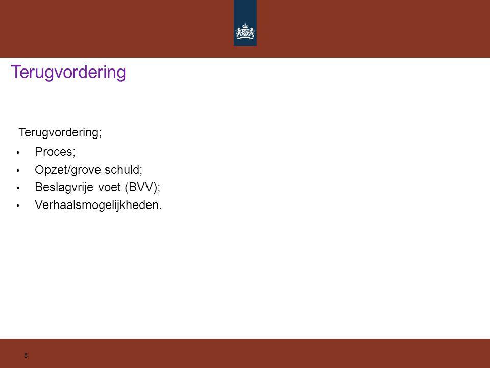 8 Terugvordering; Proces; Opzet/grove schuld; Beslagvrije voet (BVV); Verhaalsmogelijkheden.
