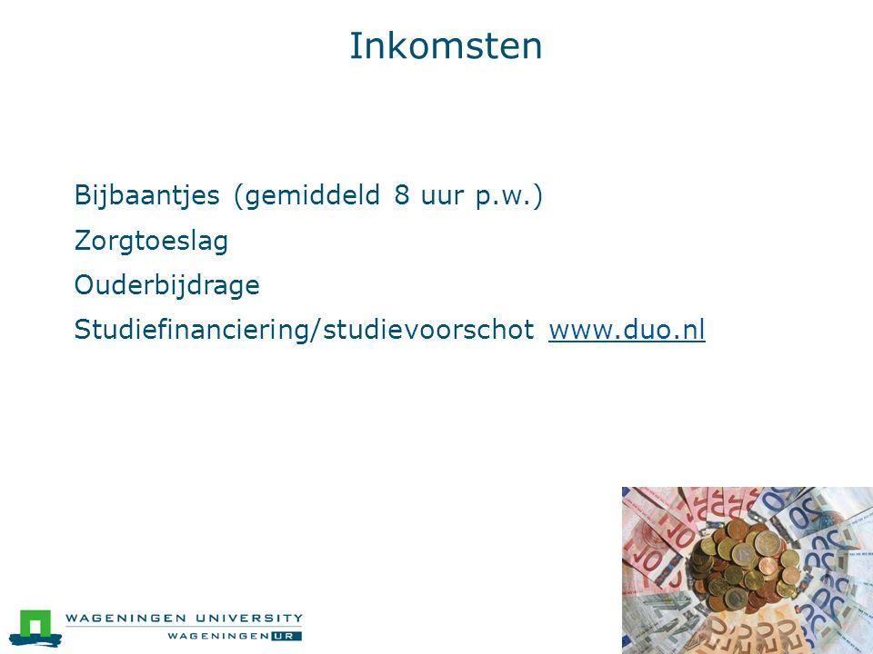 Inkomsten  Bijbaantjes (gemiddeld 8 uur p.w.)  Zorgtoeslag  Ouderbijdrage  Studiefinanciering/studievoorschot www.duo.nlwww.duo.nl