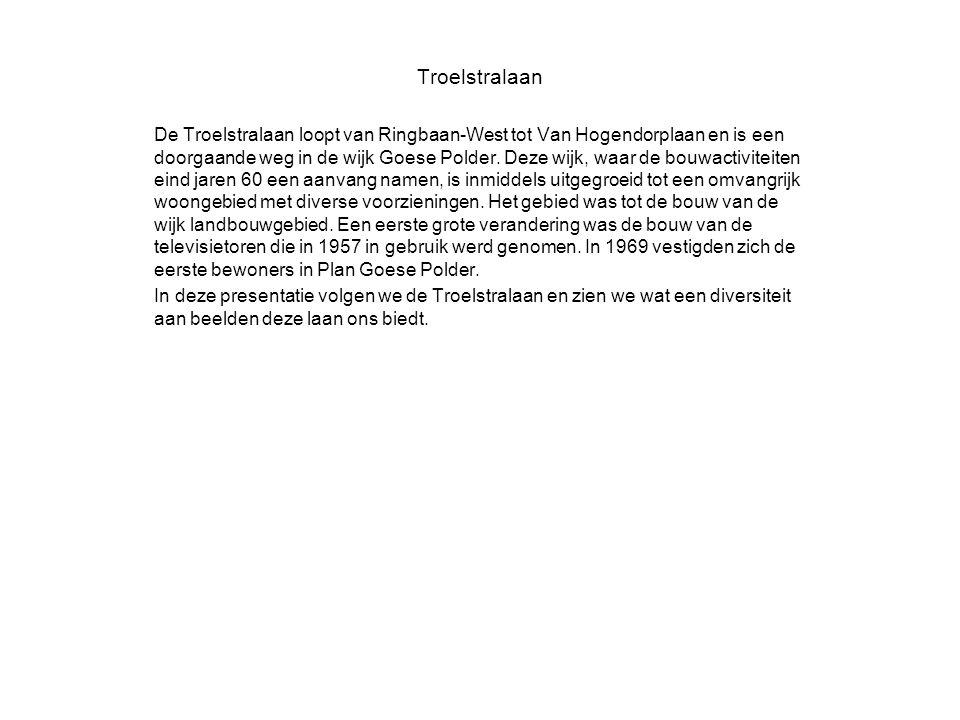 Troelstralaan De Troelstralaan loopt van Ringbaan-West tot Van Hogendorplaan en is een doorgaande weg in de wijk Goese Polder.