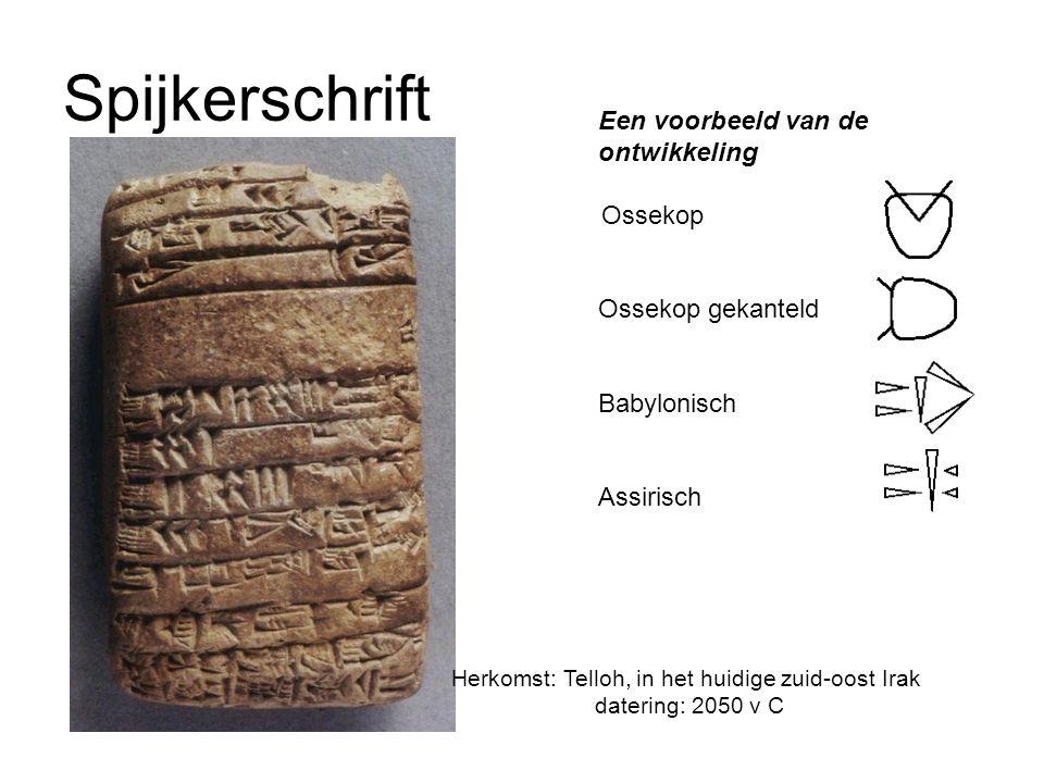 Spijkerschrift Een voorbeeld van de ontwikkeling Ossekop Ossekop gekanteld Babylonisch Assirisch Herkomst: Telloh, in het huidige zuid-oost Irak datering: 2050 v C