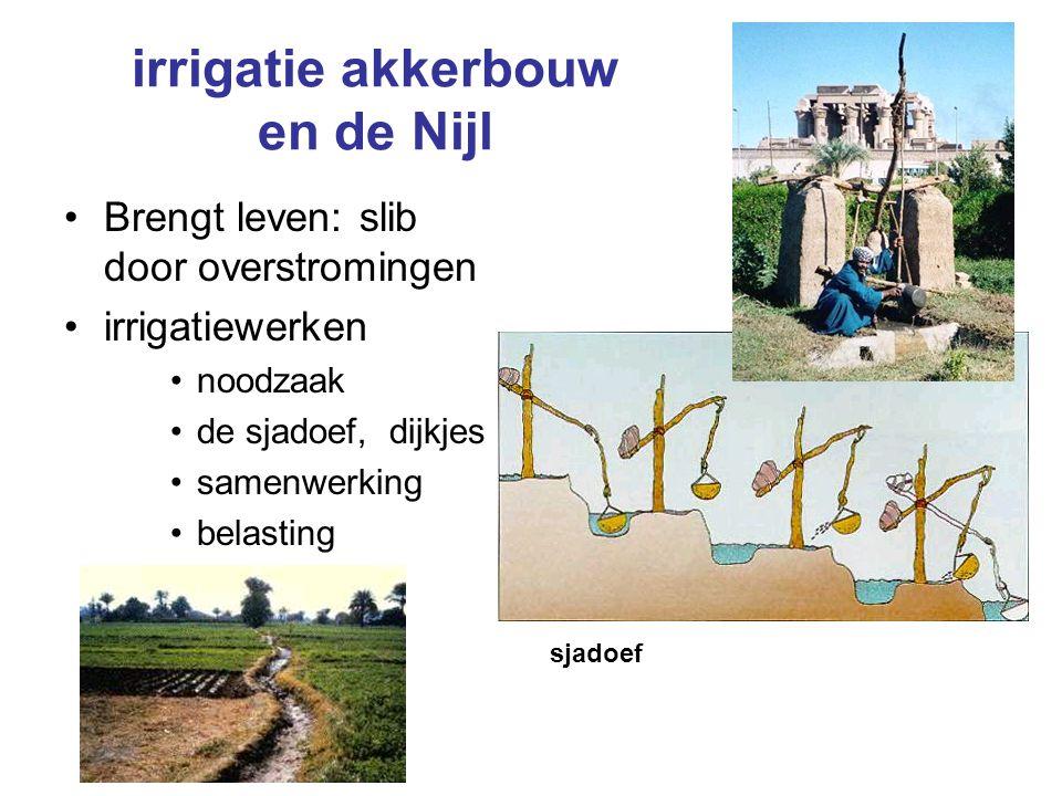 irrigatie akkerbouw en de Nijl Brengt leven: slib door overstromingen irrigatiewerken noodzaak de sjadoef, dijkjes samenwerking belasting sjadoef