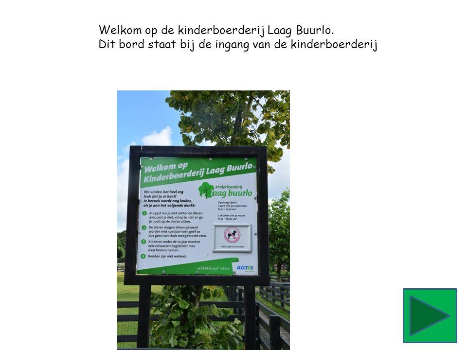 Welkom op de kinderboerderij Laag Buurlo. Dit bord staat bij de ingang van de kinderboerderij