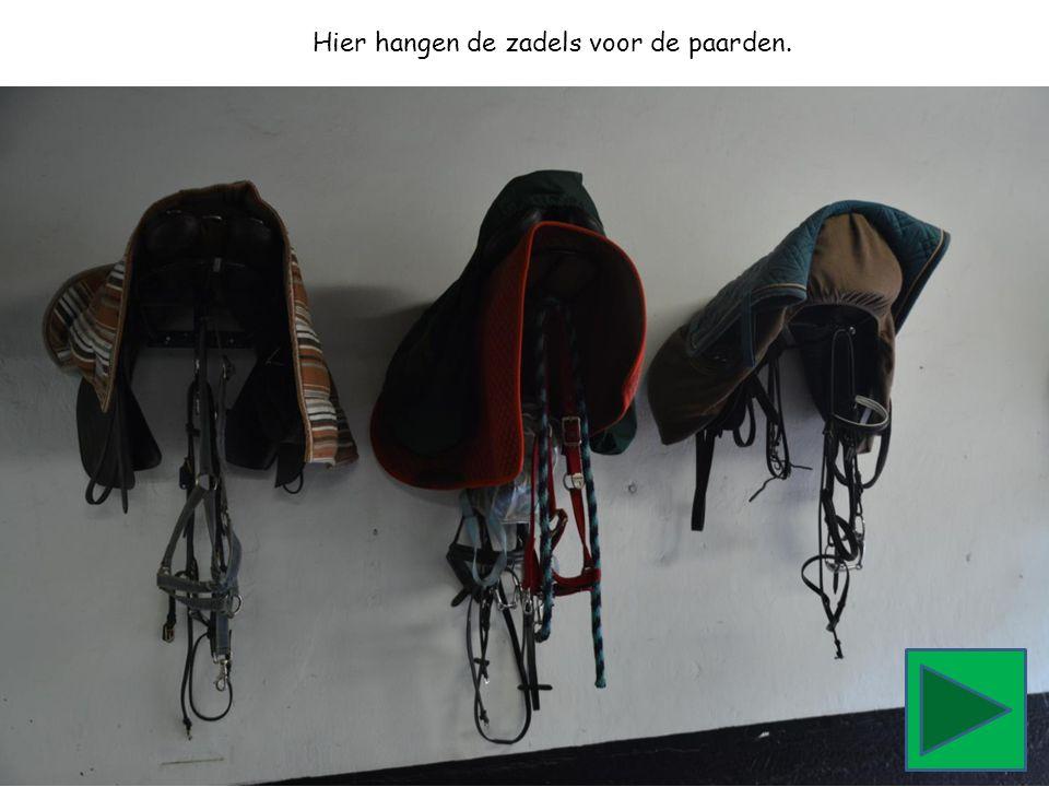 Hier hangen de zadels voor de paarden.