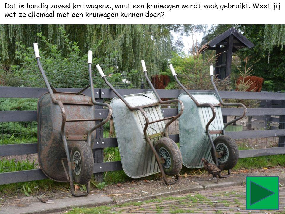 Dat is handig zoveel kruiwagens., want een kruiwagen wordt vaak gebruikt. Weet jij wat ze allemaal met een kruiwagen kunnen doen?