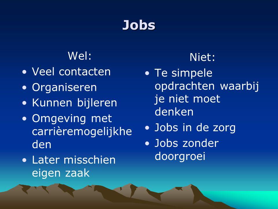 Jobs Wel: Veel contacten Organiseren Kunnen bijleren Omgeving met carrièremogelijkhe den Later misschien eigen zaak Niet: Te simpele opdrachten waarbij je niet moet denken Jobs in de zorg Jobs zonder doorgroei