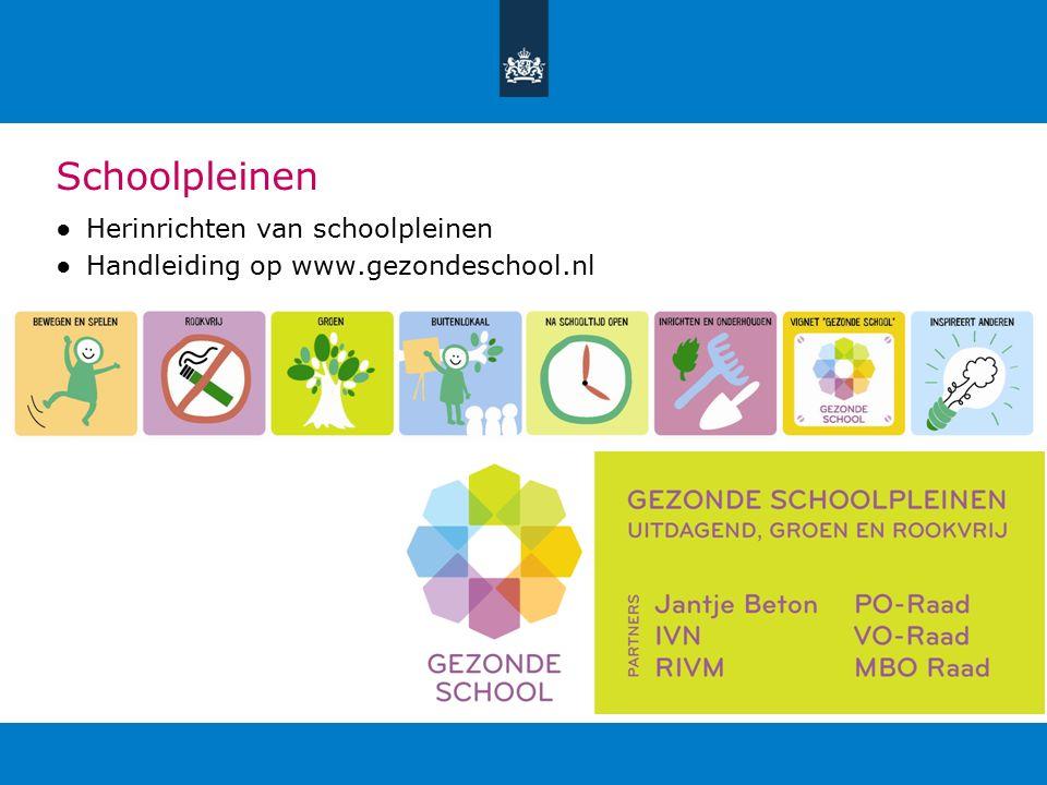 Schoolpleinen ●Herinrichten van schoolpleinen ●Handleiding op www.gezondeschool.nl