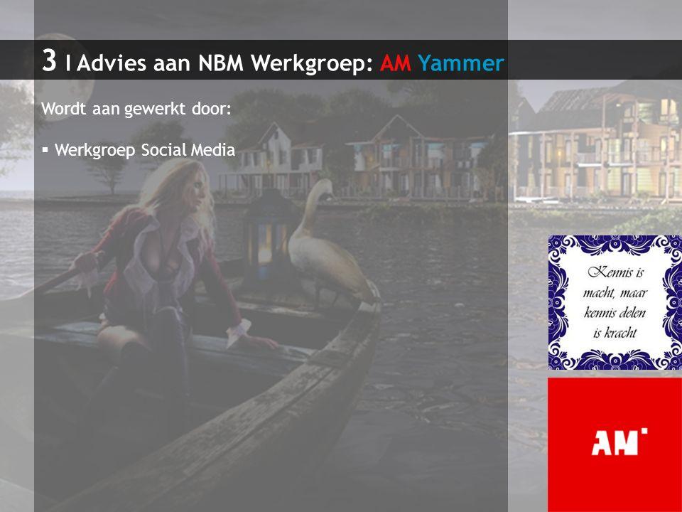 3 I Advies aan NBM Werkgroep: AM Yammer Wordt aan gewerkt door:  Werkgroep Social Media
