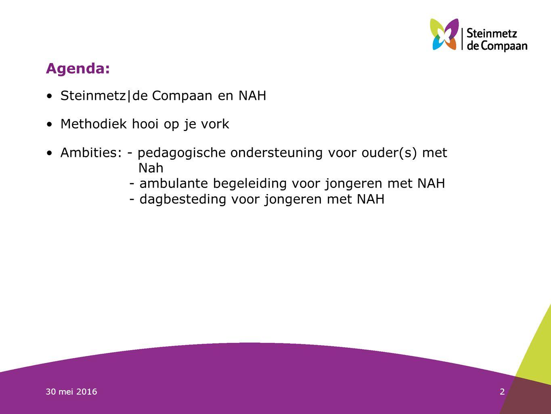 30 mei 20163 Steinmetz|de Compaan en NAH: Geschiedenis: mensen met NAH veelal in VG-sector of in psychiatrie.