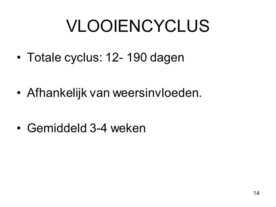 VLOOIENCYCLUS Totale cyclus: 12- 190 dagen Afhankelijk van weersinvloeden. Gemiddeld 3-4 weken 14