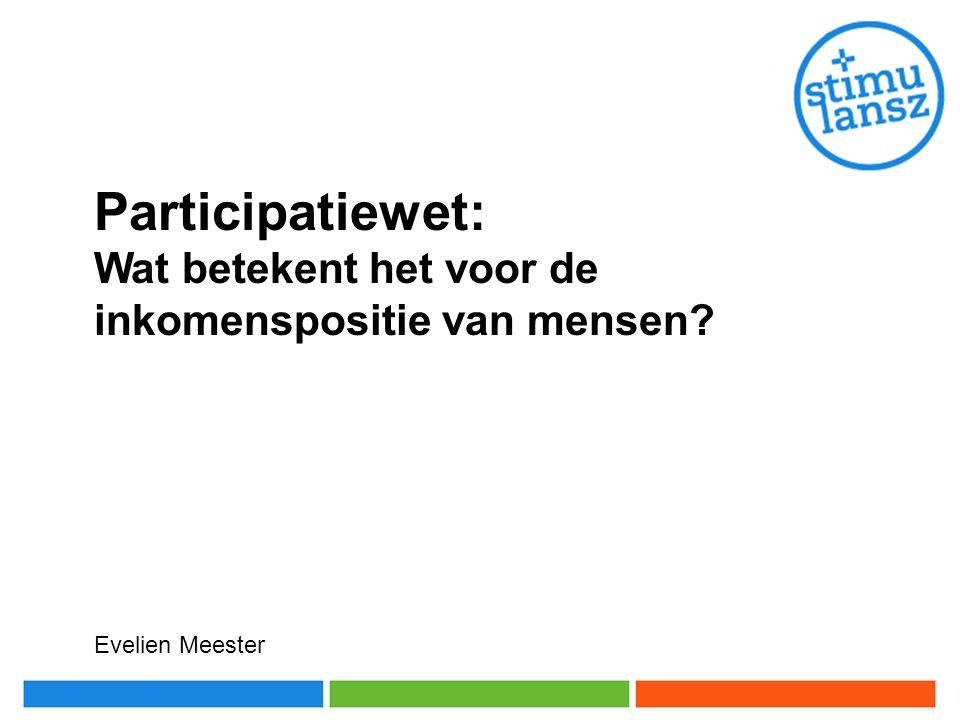 Participatiewet: Wat betekent het voor de inkomenspositie van mensen? Evelien Meester