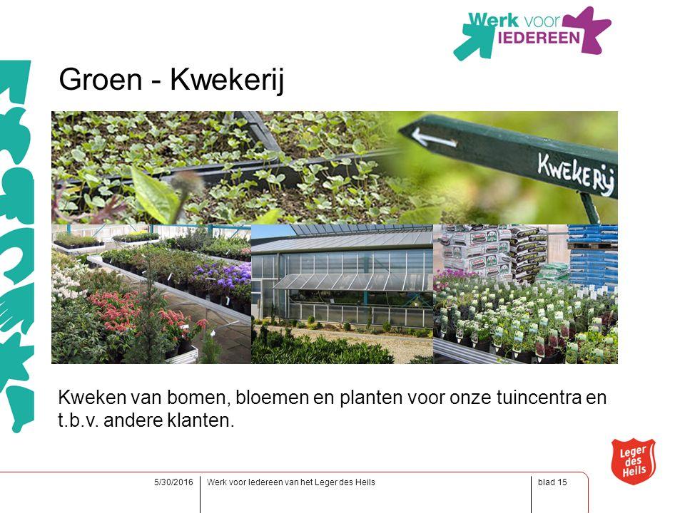 blad5/30/2016Werk voor Iedereen van het Leger des Heils15 Groen - Kwekerij Kweken van bomen, bloemen en planten voor onze tuincentra en t.b.v.
