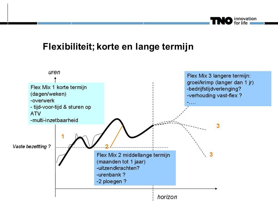 Flexibiliteit; korte en lange termijn