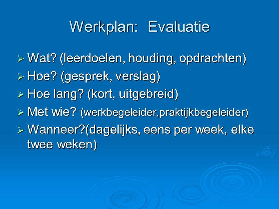 Werkplan: Evaluatie  Wat.(leerdoelen, houding, opdrachten)  Hoe.