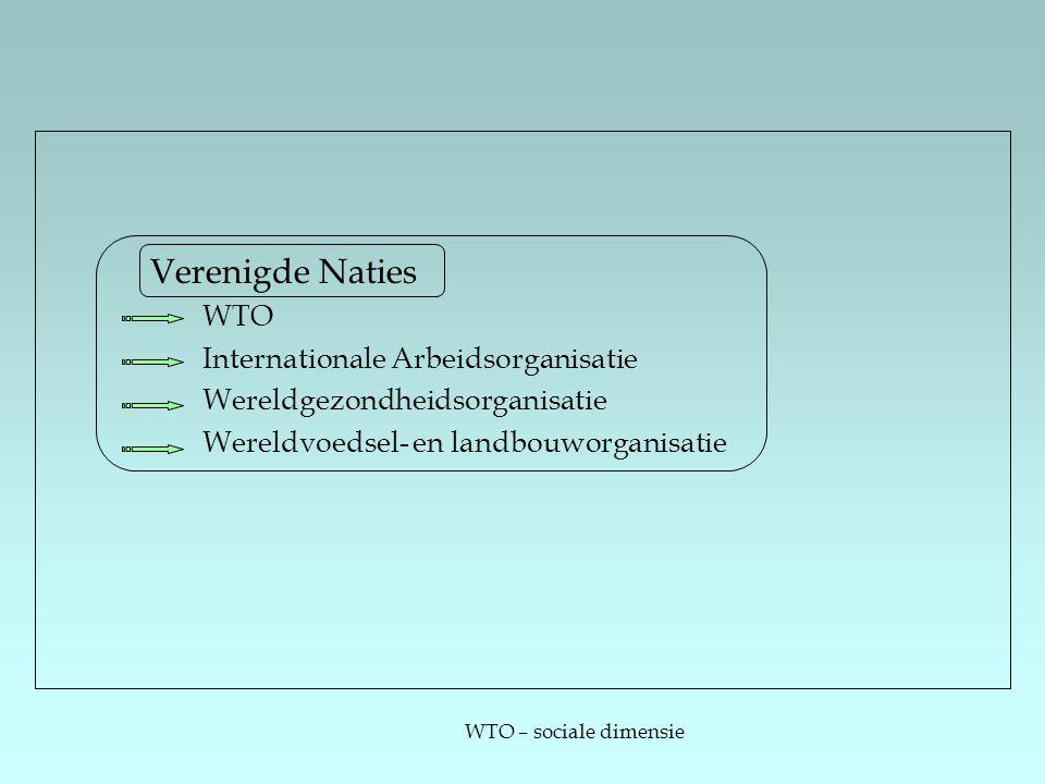 WTO – sociale dimensie Verenigde Naties WTO Internationale Arbeidsorganisatie Wereldgezondheidsorganisatie Wereldvoedsel- en landbouworganisatie