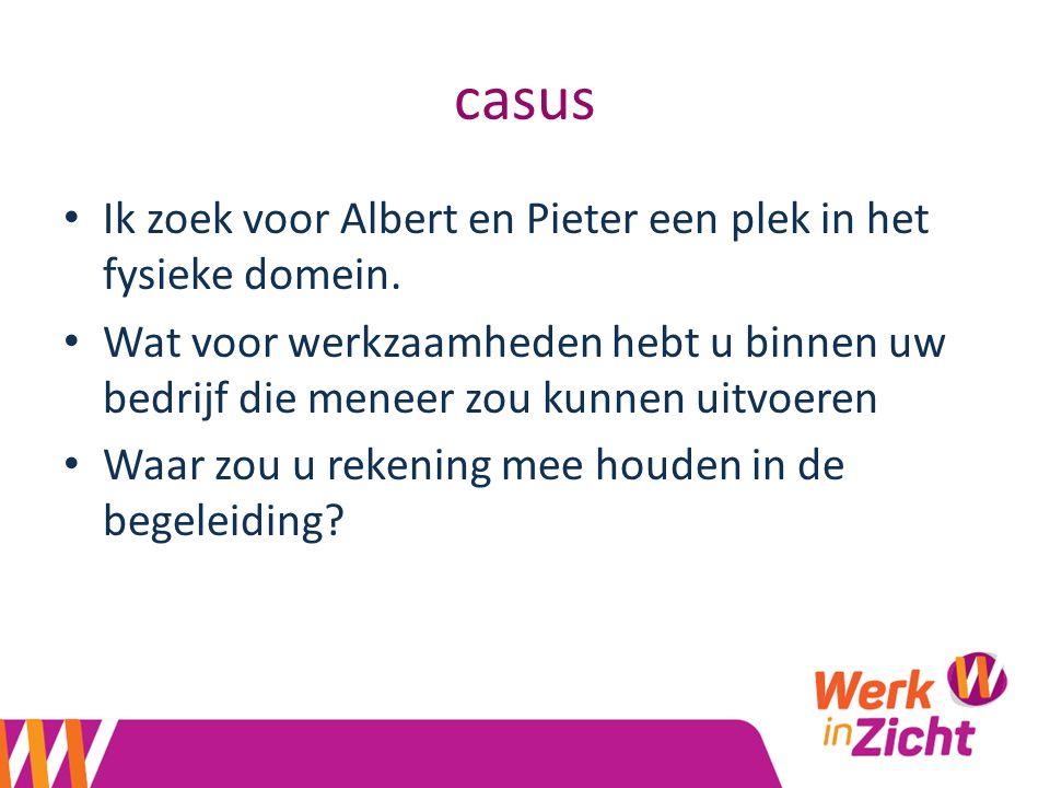casus Ik zoek voor Albert en Pieter een plek in het fysieke domein.