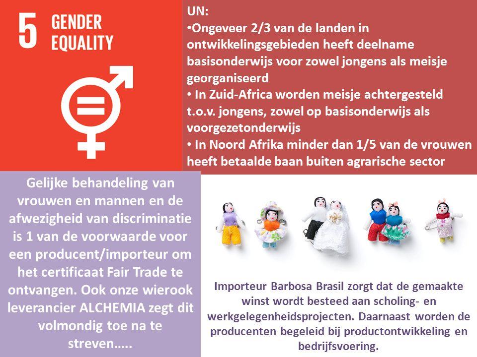 UN: Ongeveer 2/3 van de landen in ontwikkelingsgebieden heeft deelname basisonderwijs voor zowel jongens als meisje georganiseerd In Zuid-Africa worde