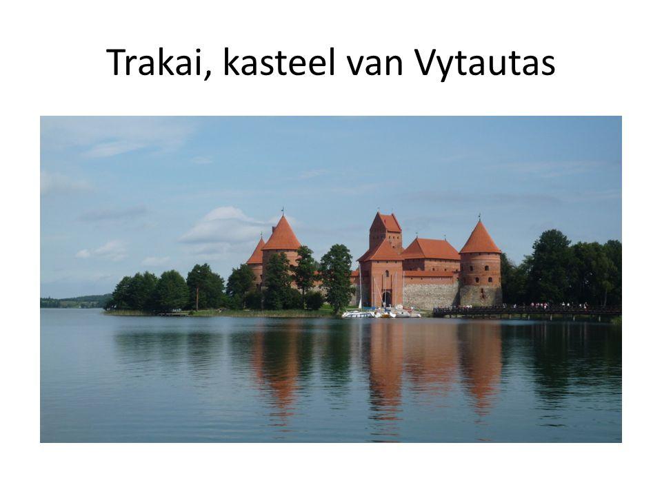 Trakai, kasteel van Vytautas