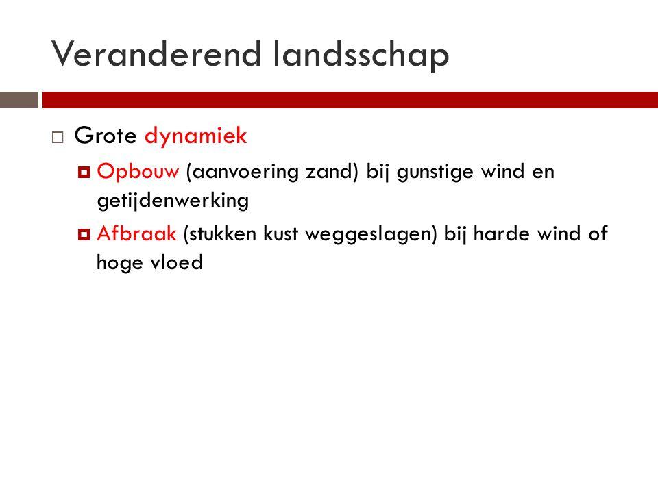 Veranderend landsschap  Grote dynamiek  Opbouw (aanvoering zand) bij gunstige wind en getijdenwerking  Afbraak (stukken kust weggeslagen) bij harde wind of hoge vloed