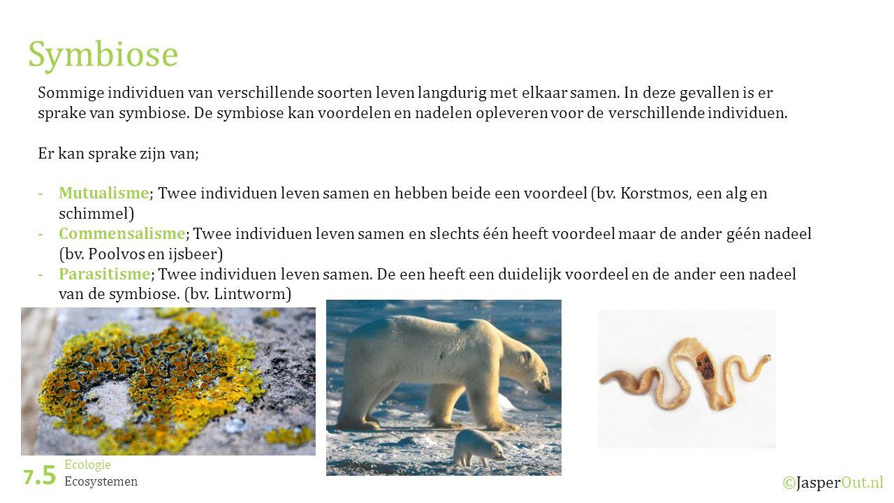 Ecologie 7.5 ©JasperOut.nl Ecosystemen Symbiose Sommige individuen van verschillende soorten leven langdurig met elkaar samen.