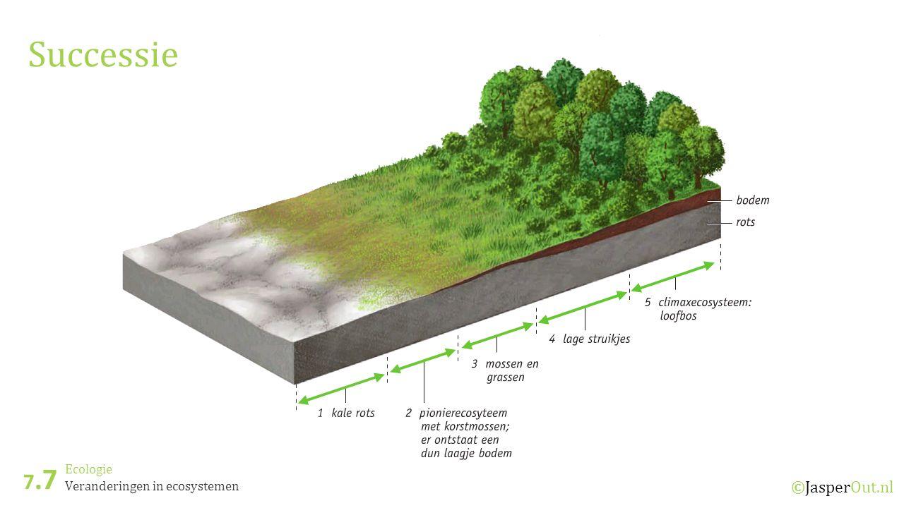 Ecologie 7.7 ©JasperOut.nl Veranderingen in ecosystemen Successie