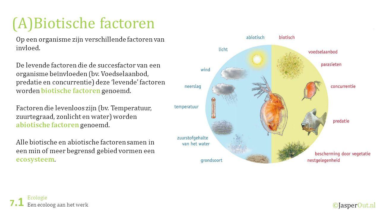 Ecologie 7.1 ©JasperOut.nl Een ecoloog aan het werk (A)Biotische factoren Op een organisme zijn verschillende factoren van invloed.