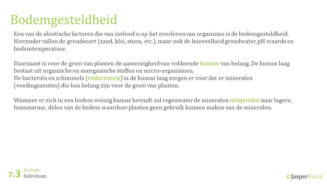 Ecologie 7.6 ©JasperOut.nl Piramides Ecologische piramides Bij een piramide van aantallen wordt aangegeven hoeveel individuen er zich binnen een trofisch niveau bevinden.