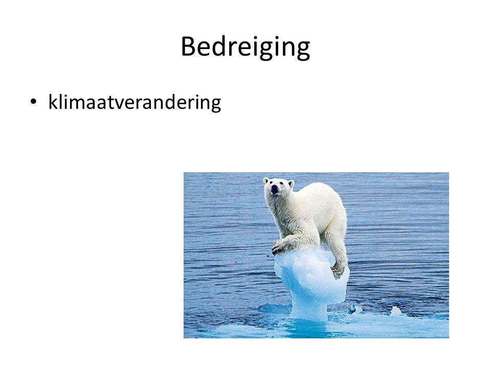 Bedreiging klimaatverandering