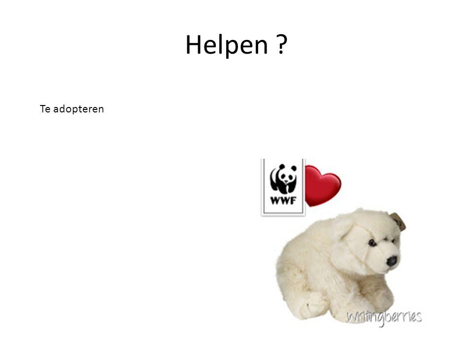 Helpen Te adopteren