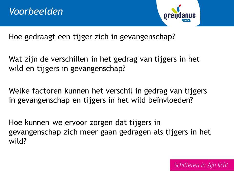 Voorbeelden Hoe gedraagt een tijger zich in gevangenschap.