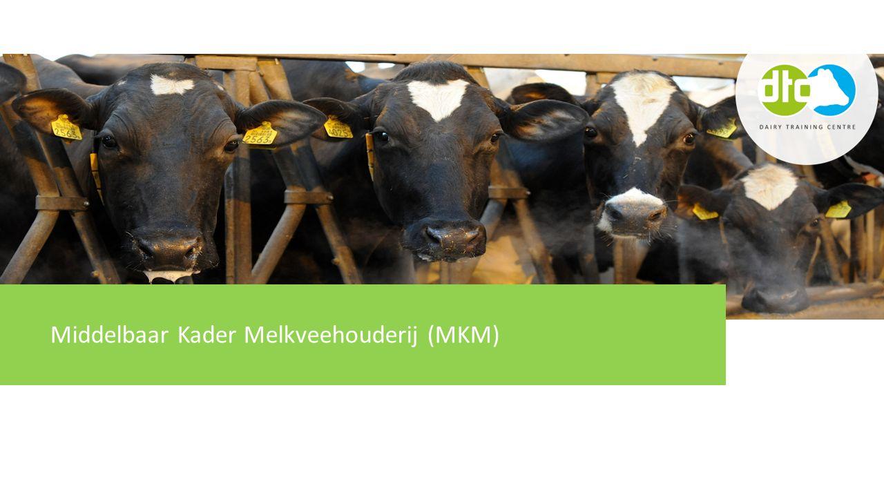 Middelbaar Kader Melkveehouderij (MKM)