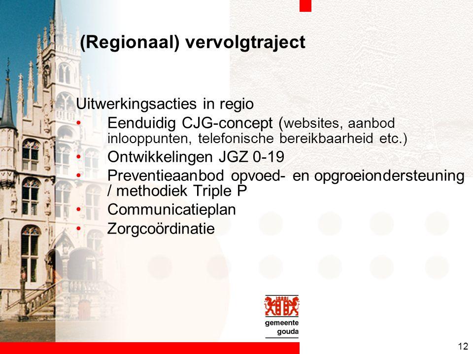 12 (Regionaal) vervolgtraject Uitwerkingsacties in regio Eenduidig CJG-concept ( websites, aanbod inlooppunten, telefonische bereikbaarheid etc.) Ontwikkelingen JGZ 0-19 Preventieaanbod opvoed- en opgroeiondersteuning / methodiek Triple P Communicatieplan Zorgcoördinatie