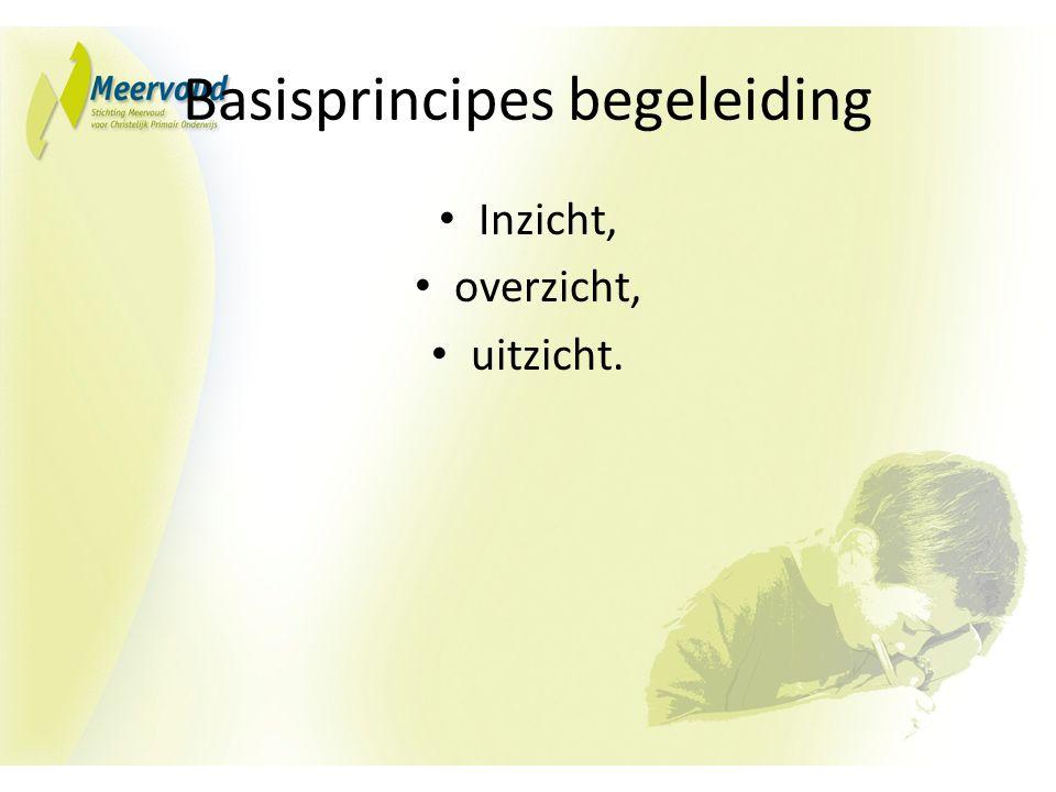 Basisprincipes begeleiding Inzicht, overzicht, uitzicht.