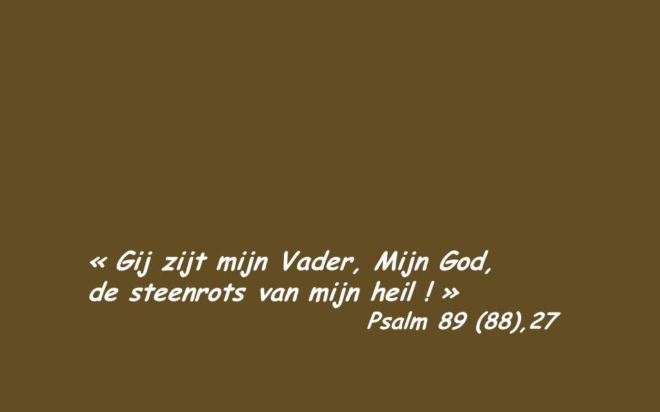 Maar de zoon zei tot hem: Vader, ik heb misdaan tegen de hemel en tegen u; ik ben niet meer waard uw zoon te heten. Doch de vader gelastte zijn knecht