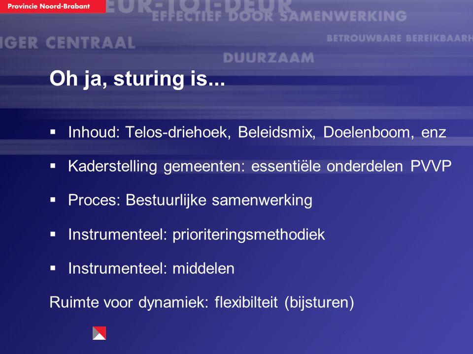 Oh ja, sturing is...  Inhoud: Telos-driehoek, Beleidsmix, Doelenboom, enz  Kaderstelling gemeenten: essentiële onderdelen PVVP  Proces: Bestuurlijk