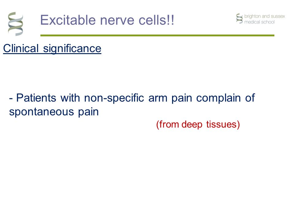 Clinical significance Excitable nerve cells!.