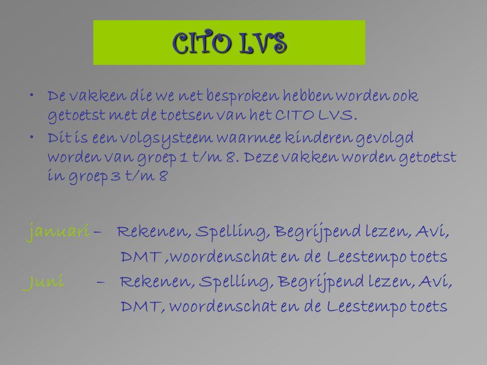 CITO LVS De vakken die we net besproken hebben worden ook getoetst met de toetsen van het CITO LVS.