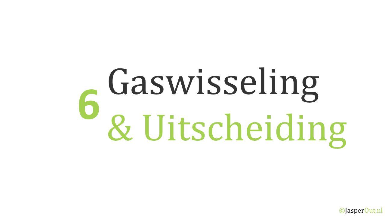 Gaswisseling & Uitscheiding 6 ©JasperOut.nl