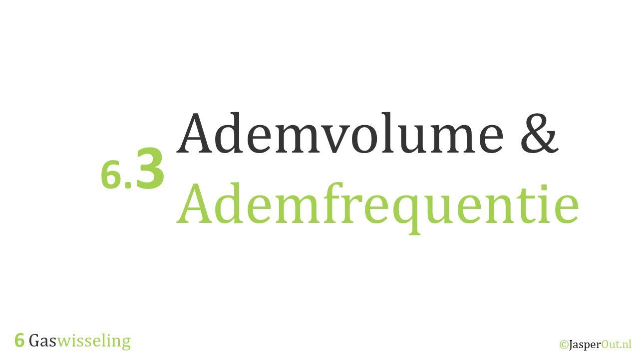 Gaswisseling 6 ©JasperOut.nl Ademvolume & Ademfrequentie 6. 3