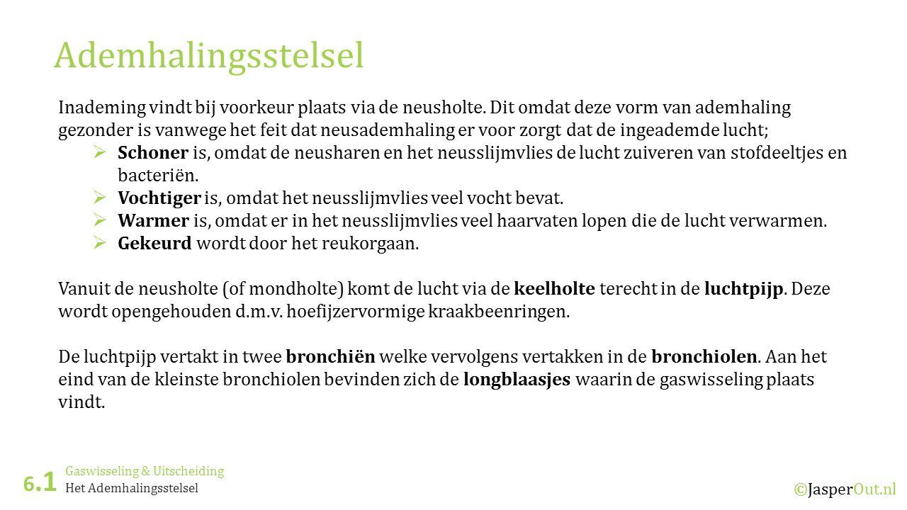 Gaswisseling & Uitscheiding 6.1 ©JasperOut.nl Het Ademhalingsstelsel Ademhalingsstelsel Inademing vindt bij voorkeur plaats via de neusholte. Dit omda
